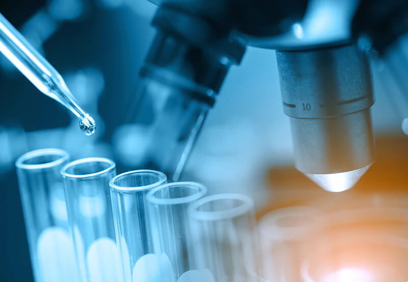 Medical Laboratory Techniques Programme