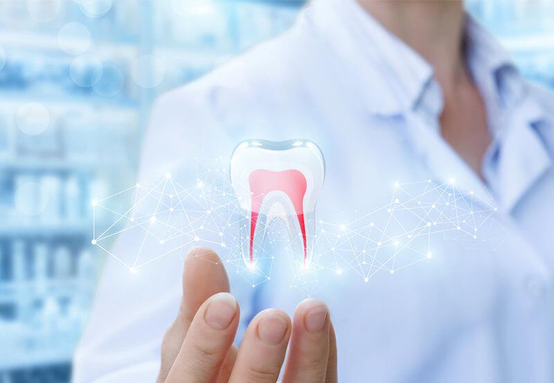 Diş Hekimliği Fakültesi Eğitimi